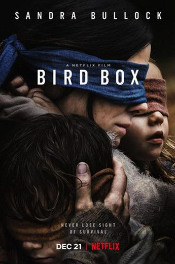 Bird Box cover