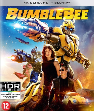 Bumblebee cover