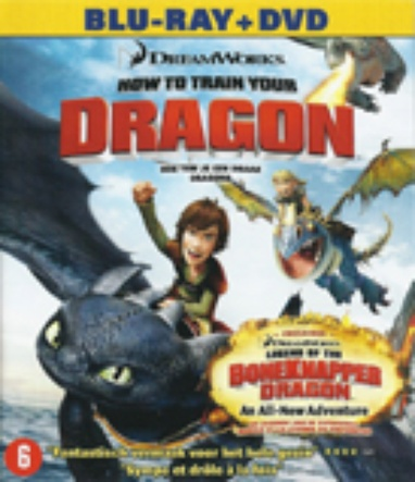 How to Train Your Dragon / Hoe Tem Je een Draak cover