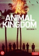 Animal Kingdom (TV-serie)