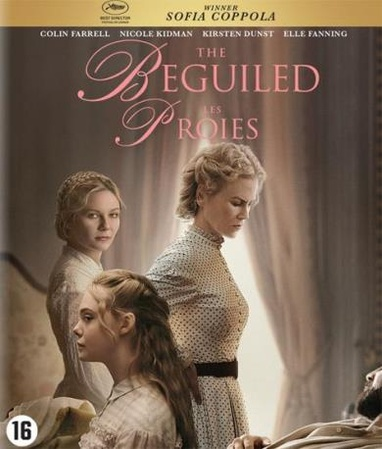 Beguiled, The cover
