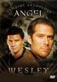 Angel: Wesley